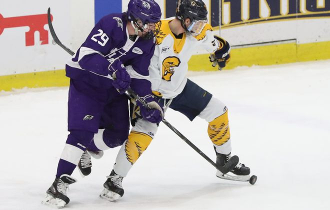 Niagara Purple Eagles forward Ludwig Stenlund battles Canisius Golden Griffins forward Casey Jerry for the puck in the first period at Harborcenter on Friday, Feb. 22, 2019. (James P. McCoy/Buffalo News)