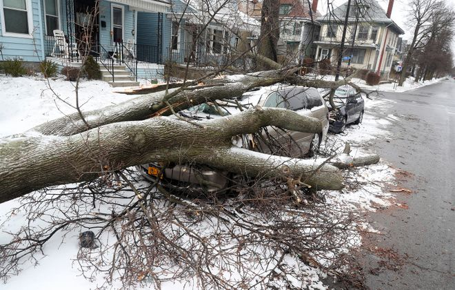 Downed trees, like this one that damaged two cars at Baynes Street by West Delavan Avenue Monday, and power outages caused schools to cancel classes Monday. (John Hickey/Buffalo News)