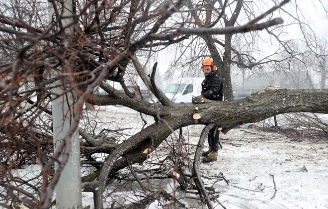 Mike Sawyer, a forestry manager from the Buffalo Olmsted Parks Conservancy, uses a chainsaw to clear a fallen tree at the corner of Elmwood Avenue and Nottingham Terrace in Buffalo on Feb. 25. (John Hickey/Buffalo News)