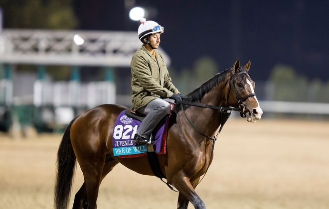War of Will, trained by Mark E. Casse, exercises in preparation for the Breeders' Cup Juvenile Turf in November 2018. Photo Credit: Evers/ESW/CSM /Breeders' Cup