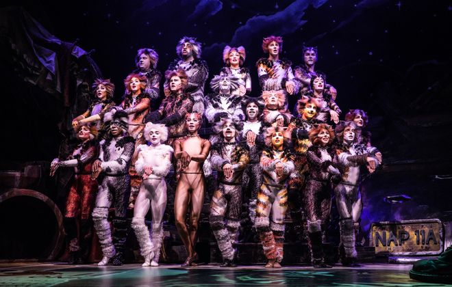 """A new touring production brings a refreshed """"Cats"""" to Shea's Buffalo Theatre. (Photo by Michael Murphy)"""