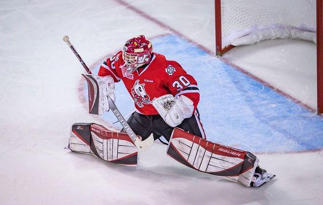 Buffalo's Stephen Dhillon has found a home in the OHL (Niagara IceDogs)