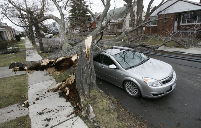 A large tree brought down by heavy wind rests on top of a car parked on Hazelwood Avenue on Dec. 28, 2008. High winds forecast for Sunday are expected to bring down numerous trees and power lines in the region. (Derek Gee/News file photo)