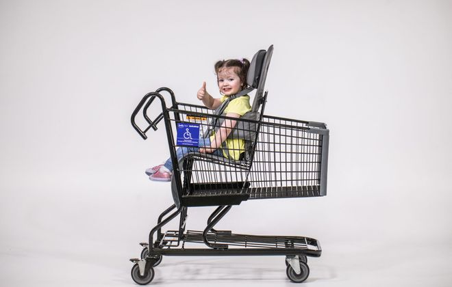 These carts are now available at all Wegmans stores. (Contributed photo)