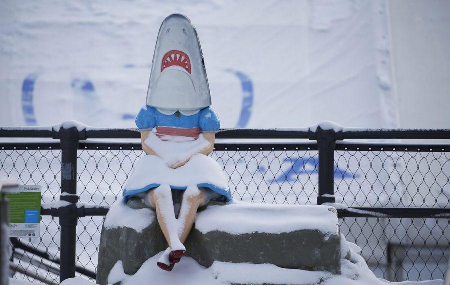 Shark Girl seemed unfazed by Buffalo's late January frenzy of snow. (Sharon Cantillon/News file photo)