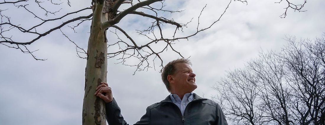 Paul Maurer, co-founder and chairman of Re-Tree WNY, stands with a London plane tree on South Park Avenue on Wednesday, April 24, 2019. (Derek Gee/Buffalo News)