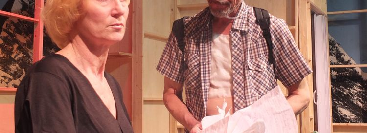 """Lisa Ludwig and John Profeta take on the meaty roles of a divorced couple brought together by a crisis in """"Annapurna"""" at New Phoenix Theatre. (Photo by Lawrence Roswell)"""