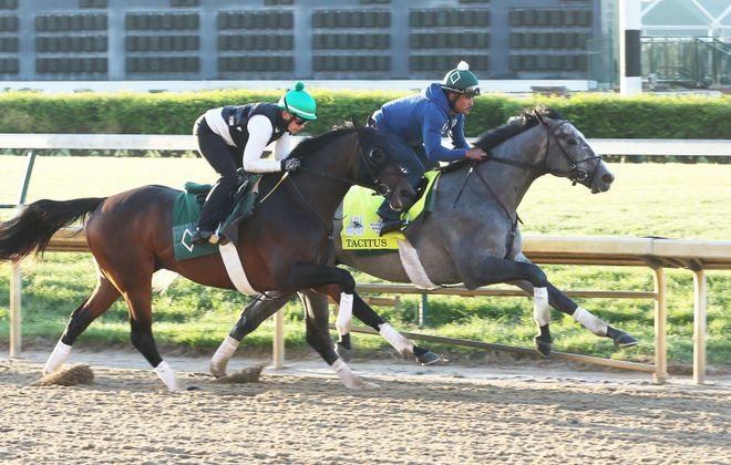 Tacitus, the Wood winner, testing out the Churchill Downs surface on Monday. (Coady Photo/Churchill Downs)