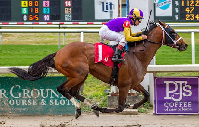 Owendale is one of two Brad Cox horses in Saturday's Preakness. Photo Credit: Hodges Photography/Fair Grounds Race Course