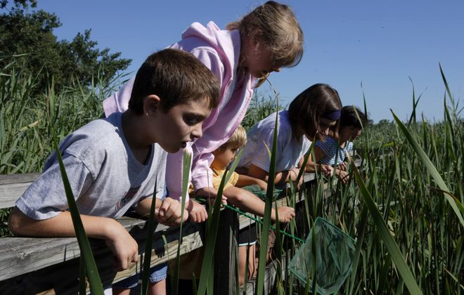 Tifft Nature Preserve's 264 acres offers plenty of wildlife sighting opportunities. (Courtesy Tifft Nature Preserve)