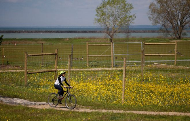 On our weekend itinerary: Cylcing around the loops and through the tunnels at the new Lakeside Bike Park in Buffalo's Outer Harbor. (Derek Gee/Buffalo News)