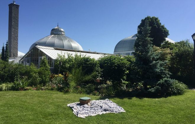 The Botanical Gardens lawn is a great space for a picnic. Afterward, walk around the park and inside the gardens. (Francesca Bond/Buffalo News)