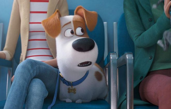 """Despite the return of familiar friends like Max, there are some scary moments for the kids in """"The Secret Life of Pets 2."""""""