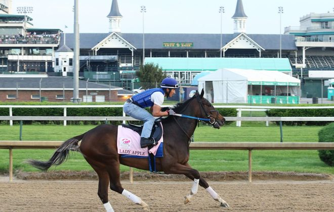 Lady Apple, the Iowa Oaks winner, is the main threat to the favorites in Saturday's Alabama. (Photo courtesy of Coady Photo/Churchill Downs)