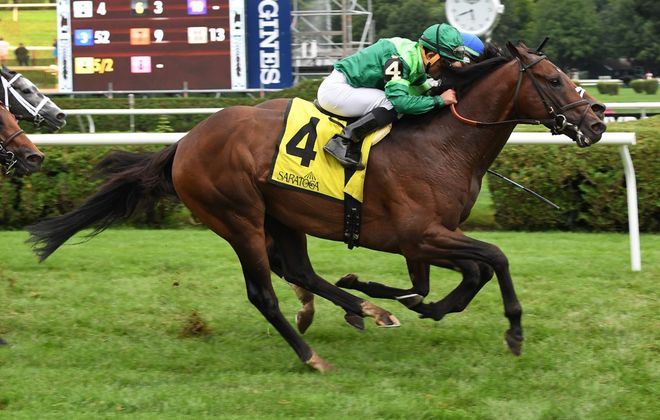 Raging Bull, won last year's Hall of Fame at Saratoga, he's the 3-1 second choice in Saturday's Fourstardave. (Photo courtesy of NYRA)
