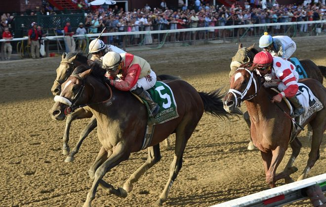 Preservationist comes into the Jockey Club Gold Cup off a big win in the Woodward at Saratoga. (Photo courtesy of Chelsea Durand/NYRA)