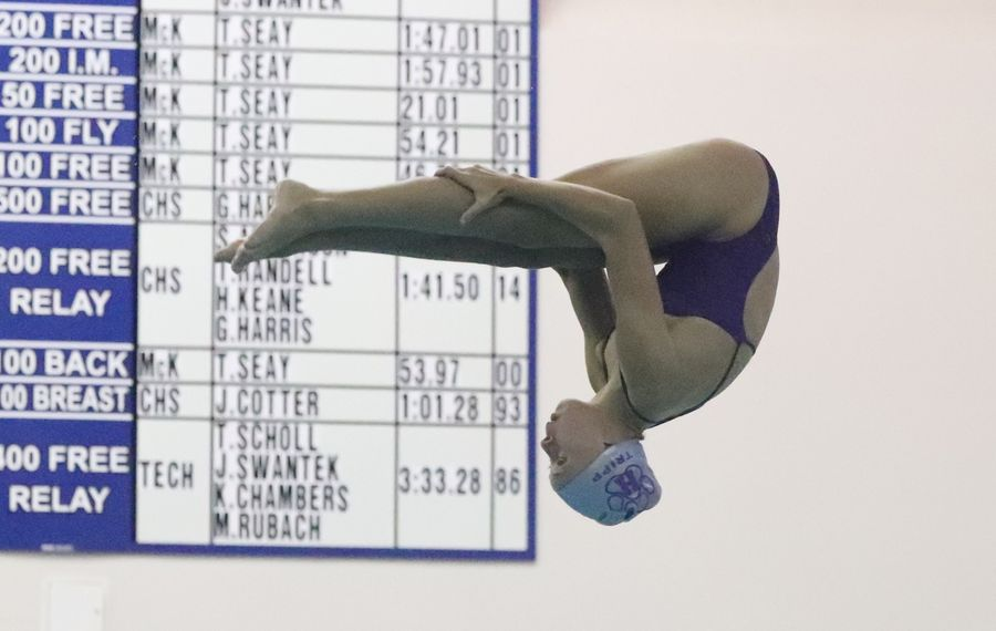 Elizabeth Tripp of Hamburg had a score of 492.75 at the Section VI class championships Thursday at City Honors High School (James P. McCoy/Buffalo News)