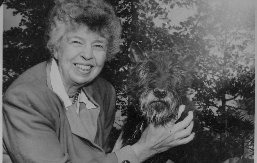 Eleanor Roosevelt with the Presidential pet, Fala, at Hyde Park. (Franklin D. Roosevelt Library)