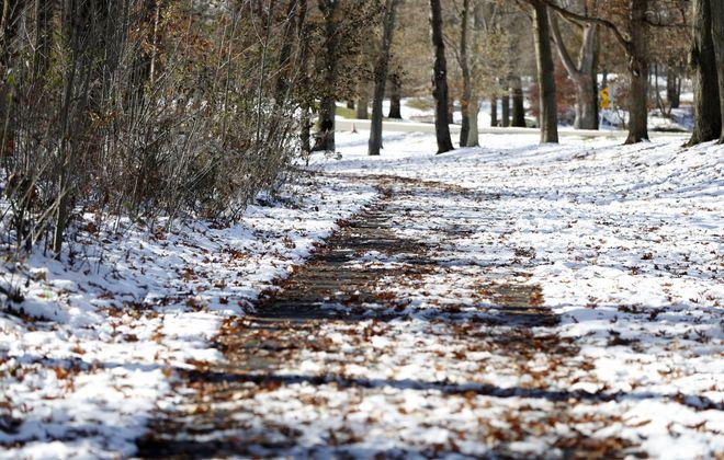 A hiking trail in the Niagara Glen area in Niagara Falls, Ont., on Nov. 17, 2019. (Mark Mulville/Buffalo News)