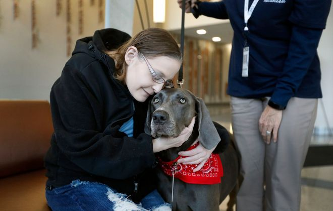 Sarah Ross felt a bit weathered after her latest visit to Roswell Park Comprehensive Cancer Center, but that quickly changed when she saw Bella, a therapy dog. Bella's owner Sue Currey, right, has witnessed the magic such chance meetings make, and says they're healthy for Bella, too. (Mark Mulville/Buffalo News)