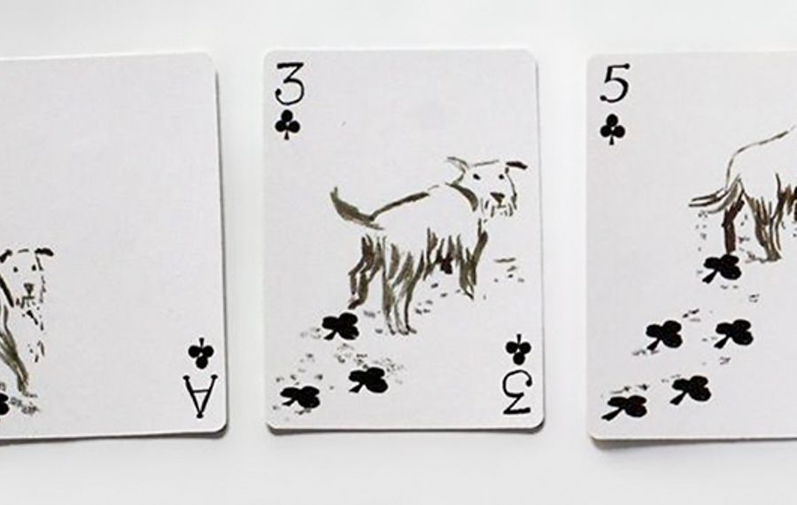 Pack of Dogs playing cards by San Francisco artist John Littleboy.
