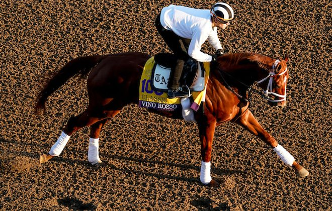 Breeders' Cup Classic entrant Vino Rosso, trained by Todd A. Pletcher, exercises in preparation for the Breeders' Cup World Championships at Santa Anita Park in Arcadia, California on October 31, 2019.  Credit: John Voorhees/Eclipse Sportswire/Breeders Cup/CSM
