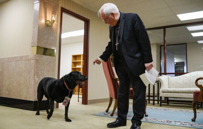 Bishop Richard J. Malone plays with his dog, Timon, in his office at the diocese headquarters on Oct. 4, 2018. (Derek Gee/News file photo)
