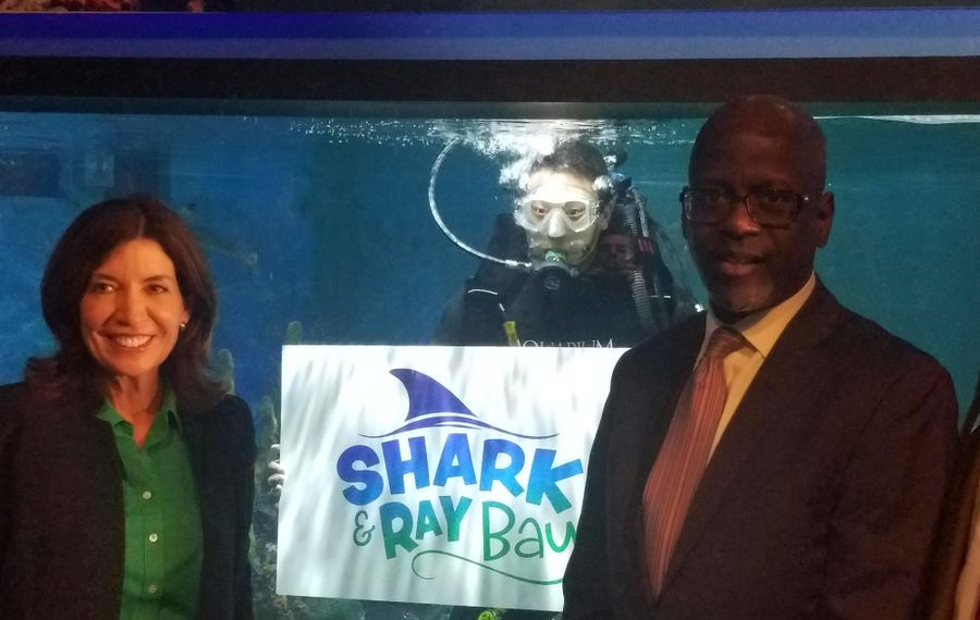 Lt. Gov. Kathy Hochul and Lawrence H. Cook II, vice president of the John R. Oishei Foundation, flank a diver at a news conference about M&T Bank Shark and Ray Bay in the Aquarium of Niagara on Sept. 27, 2019. (Thomas J. Prohaska/Buffalo News)