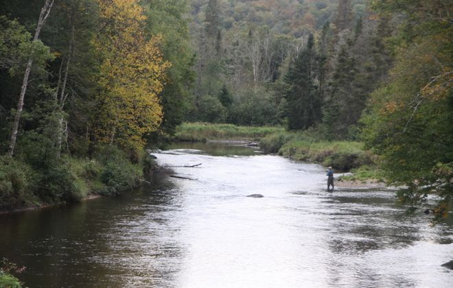 """Trout Unlimited is working hard to protect Class """"C"""" streams around the state. (Bill Hilts, Jr./Buffalo News)"""