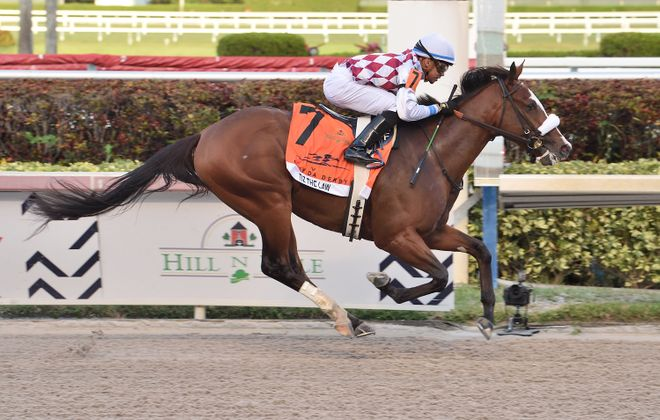 Tiz the Law captures the 69th Florida Derby to earn a trip to the Kentucky Derby. Photo Credit: Lauren King/Gulfstream Park