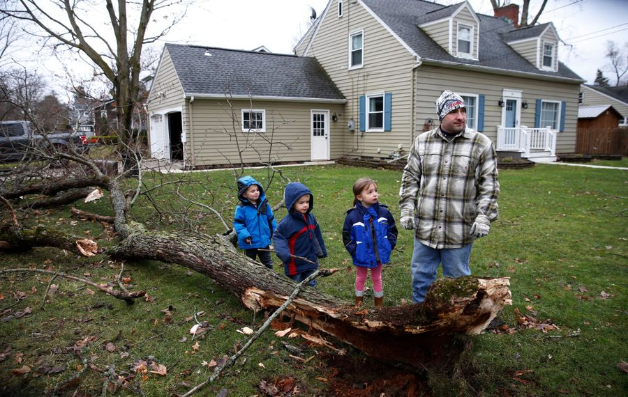 It was a close call from the overnight windstorm for the Gill family and their triplets as a large maple tree fell, but missed their home on Maple Street in East Aurora. (Robert Kirkham/Buffalo News)