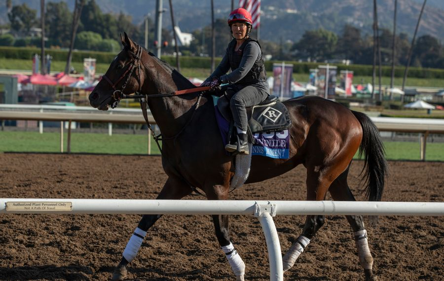 Post Time: Fountain of Youth is leap day for Derby hopefuls