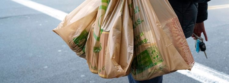 Wegmans has already begun following New York State's plastic bag requirements. (Derek Gee/News file photo)