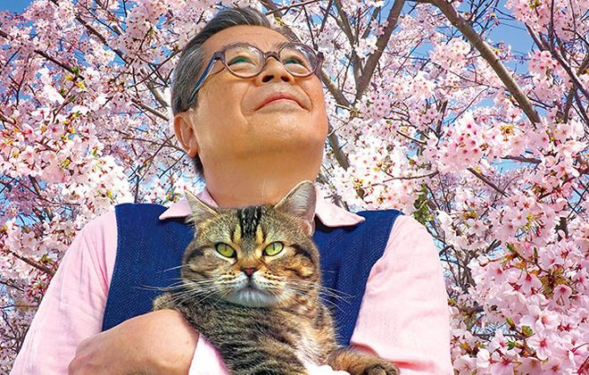 "The touching Japanese film ""The Island of Cats"" will premiere at the North Park Theatre as part of a weekend devoted to cats."