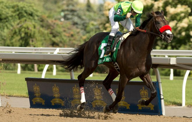 Last year's Queen's Plate winner One Bad Boy. This year's Plate has been postponed to a later date due to the Covid-19 pandemic. (Photo courtesy of Woodbine/michael burns photo)