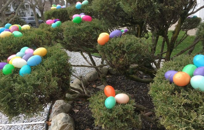 Lots and lots of decorative Easter eggs can be seen outside  the Amherst home of Judie and Bob Pufpaff. (Photo courtesy of Judie Pufpaff)