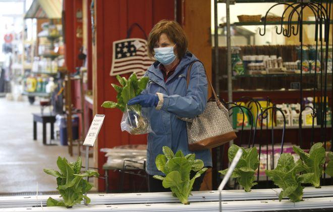 Customer Tina Obad of Hamburg selects some hydroponic romaine  lettuce at Zittels Greenhouses in Hamburg. (Robert Kirkham/Buffalo News)