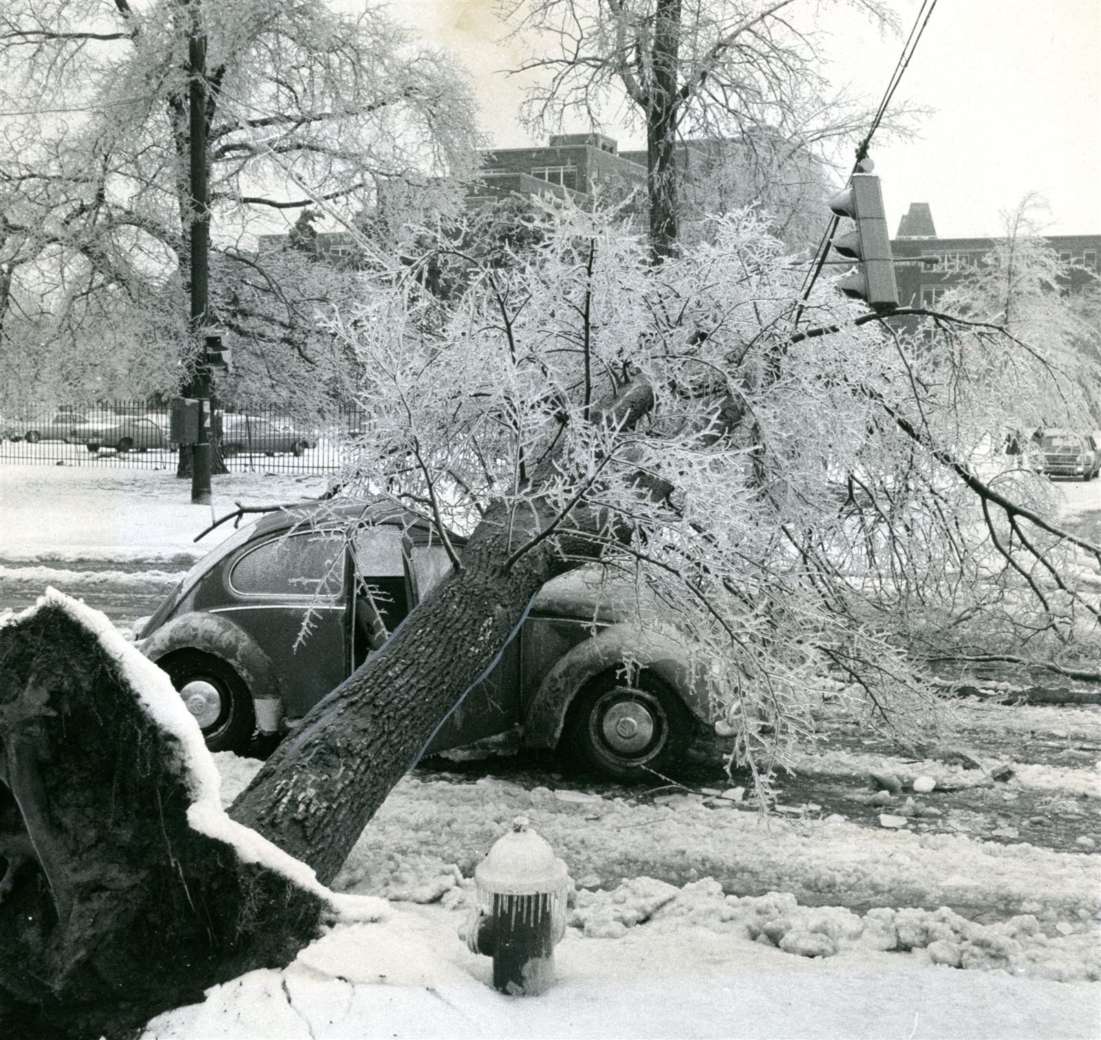 10. The Ice Storm of 1976 -- It hit in early March and caused tens of thousands to lose power for days.