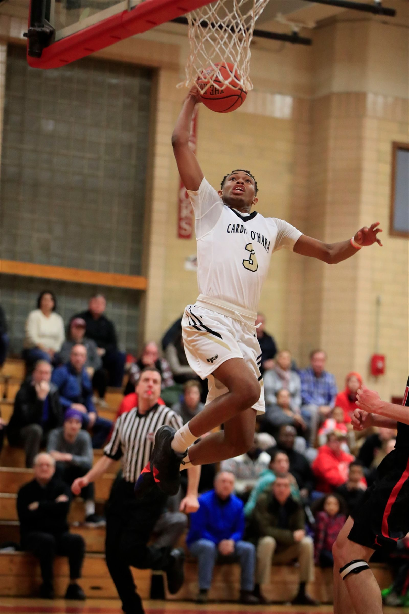 Cardinal O'Hara forward Haakim Siner dunks against St. Francis during first half action at St. Francis High School on Wednesday, Jan. 16, 2019.
